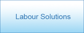 labour-solutions